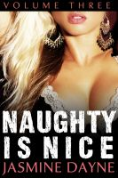 Cover for 'Naughty is Nice Volume 3'