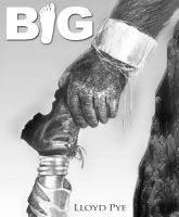 Cover for 'Big'