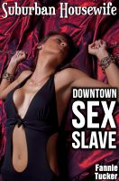 Cover for 'Suburban Housewife, Downtown Sex Slave (A BDSM Erotic Romance)'