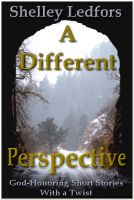 Cover for 'A Different Perspective--God-Honoring Short Stories with a Twist'
