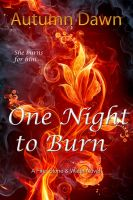 Cover for 'One Night to Burn'