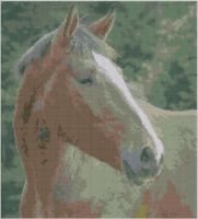 Cover for 'Horse 6 Cross Stitch Pattern'