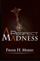 Cover for 'A Perfect Madness'