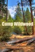 Kacey & Friends at Camp Wildwood by C. Metzinger