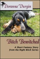 Bitch Bewitched cover