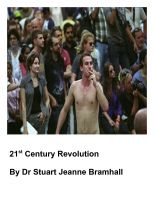 Cover for '21st Century Revolution'