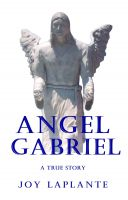 Cover for 'Angel Gabriel - A True Story'