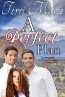 Cover for 'A Perfect Plan, A Billionaire in Disguise Series, Book 2'