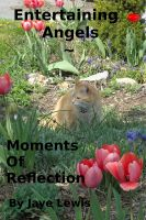 Cover for 'Entertaining Angels ~ Moments of Reflection'