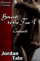 Cover for 'Bound to the Fae #1: Captured'