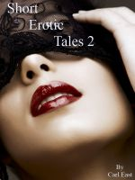 Cover for 'Short Erotic Tales 2'