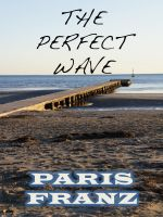 Cover for 'The Perfect Wave, a short story'