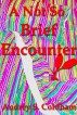 A Not So Brief Encounter by Audrey Coldham