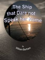 Cover for 'The Ship that Dare not Speak her Name.'