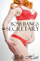 Cover for 'Boss Bangs the Secretary'