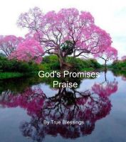 Cover for 'God's Promises - Praise'
