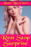 Cover for 'Rest Stop Surprise'