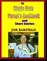 The Single Male Parents Cookbook and Short Stories cover