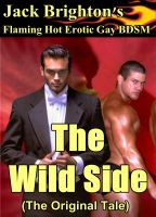 Cover for 'The Wild Side (Flaming Hot Erotic Gay BDSM)'