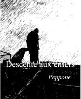 Cover for 'Descente aux enfers'