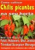 Como cultivar chilis picantes na seu horta by Bruno Del Medico