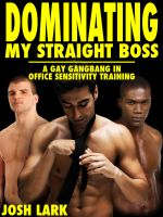 Cover for 'Dominating my Straight Boss (A Gay Gangbang in Office Sensitivity Training)'
