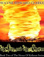 Cover for 'The Fire And The Storm - Metric Pro. Edition'