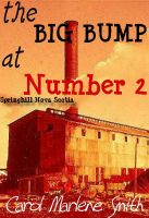 Cover for 'the BIG BUMP at Number 2'