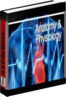 Cover for 'Breaking Down Anatomy & Physiology'