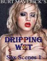 Cover for 'Dripping Wet Sex Scenes 1'