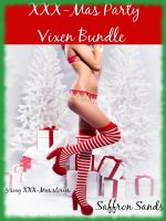 Cover for 'XXX-Mas Party Vixen Bundle'