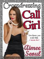 Cover for 'Crossdressing Call Girl'