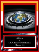 Cover for 'Oil Jobs in U.S.A. Petroleum Production'