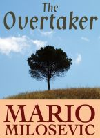Cover for 'The Overtaker'