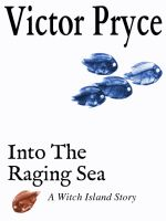 Cover for 'Into The Raging Sea'