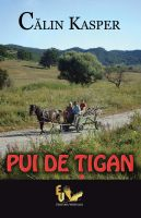 Cover for 'Pui de tigan'