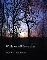 Cover for 'While We Still Have Time'