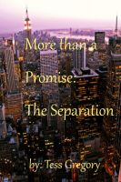 Cover for 'More than a Promise: The Separation'