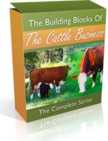 Cover for 'The Building Blocks of the Cattle Business: The Complete Series'