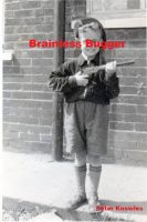 Cover for 'Brainless Bugger'