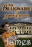 Cover for 'The Billionaire of Aspen Estates (The Concord Series #1)'