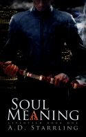 Cover for 'Soul Meaning: Seventeen Book One'