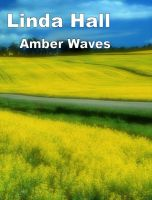 Cover for 'Amber Waves'