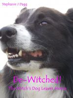 Cover for 'De-Witched!'