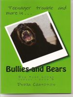Cover for 'Bullies and Bears'