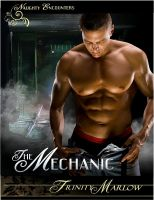 Cover for 'The Mechanic'