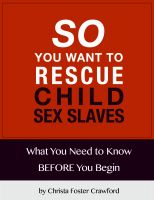 Cover for 'So You Want to Rescue Child Sex Slaves? What You Need to Know Before You Begin'