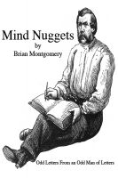 Cover for 'Mind Nuggets'