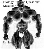 Cover for 'Biology Practice Questions: Muscular System'