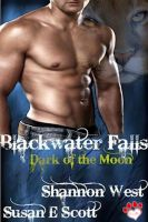 Cover for 'Blackwater Falls: Dark of the Moon'